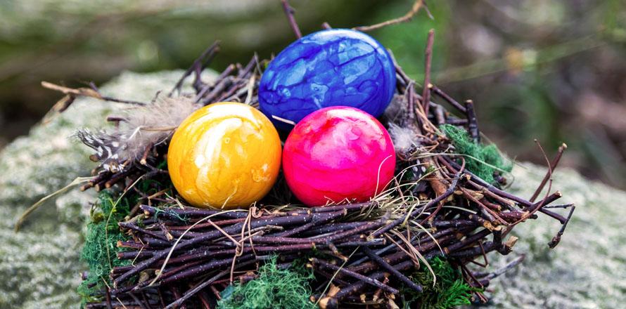 Auf einem Stein liegt ein Osternest aus Reisig, in dem sich ein blaues, ein pinkes und ein gelbes Ei befinden