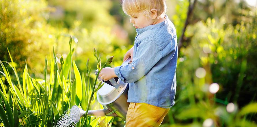 Junge gießt Kräuter im Garten